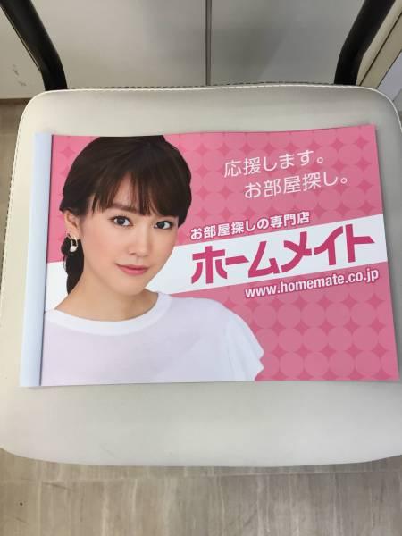 ☆桐谷美玲☆最新バージョン☆A4サイズの書類入れ(ファイル式・横型) 未使用品 ホームメイト 非売品