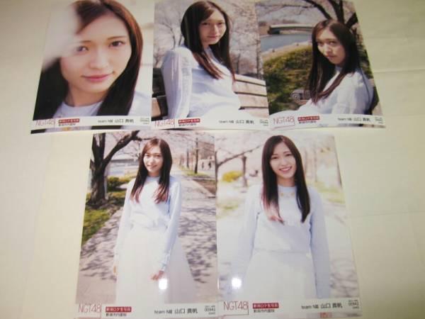 NGT48 月別 ロケ 生写真 コンプ 2017 4月 April 山口真帆 5種コンプ  ライブグッズの画像