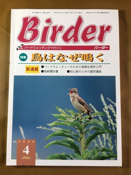 Birder (バーダー) 2000年4月■鳥が鳴く理由~楽しみ方/ 初心の識別講座~ヒタキ類/ ハトに親しむ方法■メダイチドリ/ トラツグミ/ スズメ_画像1