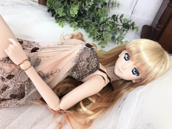 DD☆ドルフィードリーム☆Lingerie of the brown rose