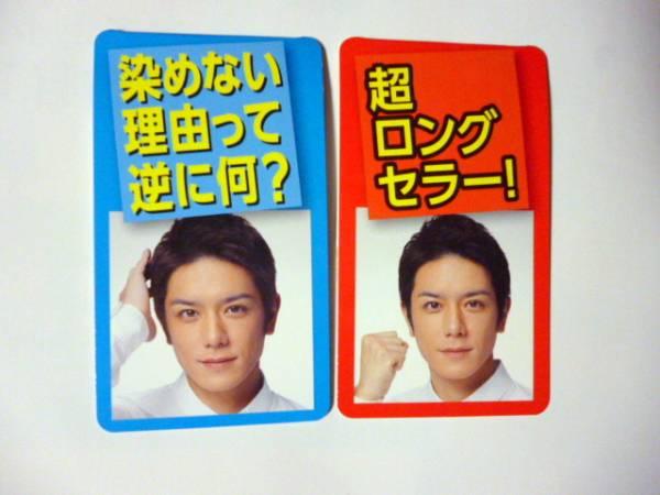 2種セット 非売品 滝沢秀明 ビゲン ミニ ポップ
