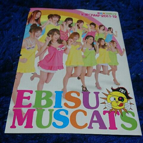 【希少/美品】恵比寿マスカッツ 全国CAMP パンフレット ライブグッズの画像