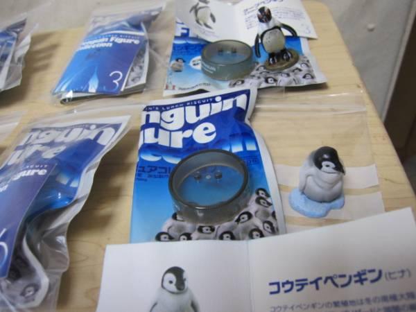 海洋堂 KAIYODO ペンギンズランチ 8種各2+シークレット 計17個で ③_画像3