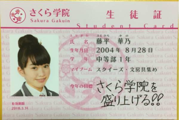 【さくら学院】2017年度 生徒証 『藤平華乃』