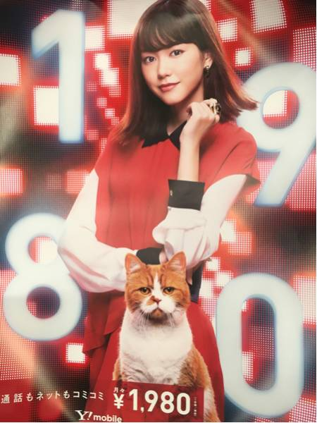桐谷美玲Yモバイルポスター