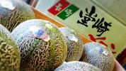 【京の果実屋】甘くてオイシイ!アムスメロン★長崎極上の味わい