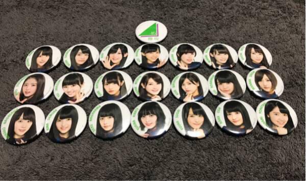 欅坂46 POP UP STORE 缶バッジ【全22種フルコンプ】個別保管+限定非売品ステッカー1枚
