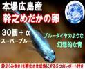広島産 ブルーダイヤ めだか卵30個 みゆき 卵 メダカ 幹之 青 最高級