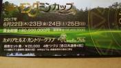 アース・モンダミンカップ 観戦券1枚(送料無料)