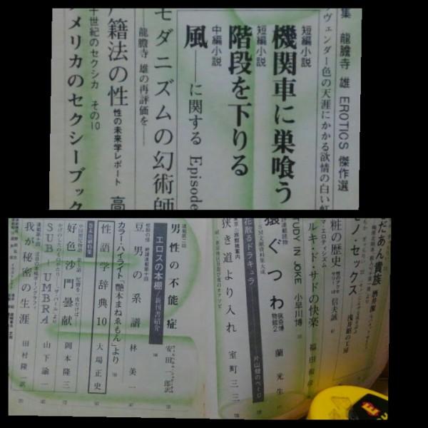 昭和45年4月号 えろちか 特集 龍胆寺雄 / 竜胆寺雄 片山健_画像2