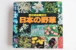 日本の野草◆山渓カラー名鑑 ◆山と渓谷社