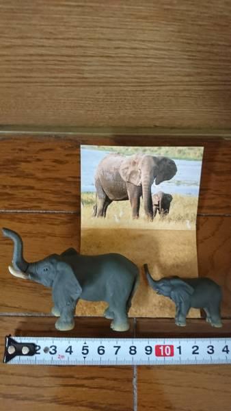 バンダイBANDAI 世界自然動物 アフリカ編 ゾウ親子B フィギュア食玩_画像3