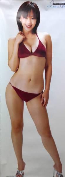 井上和香 全身ポスター 週刊プレイボーイ 約 170㎝ x 63㎝ グッズの画像