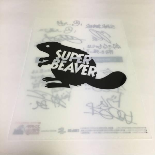 希少 非売品 SUPER BEAVER クリアファイル スーパービーバー ロックインジャパン カウントダウンジャパン CDJ 京都大作戦 フェス