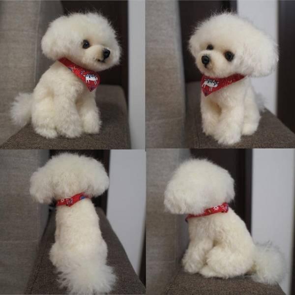 羊毛フェルト トイプードル ハンドメイド 犬 _画像3