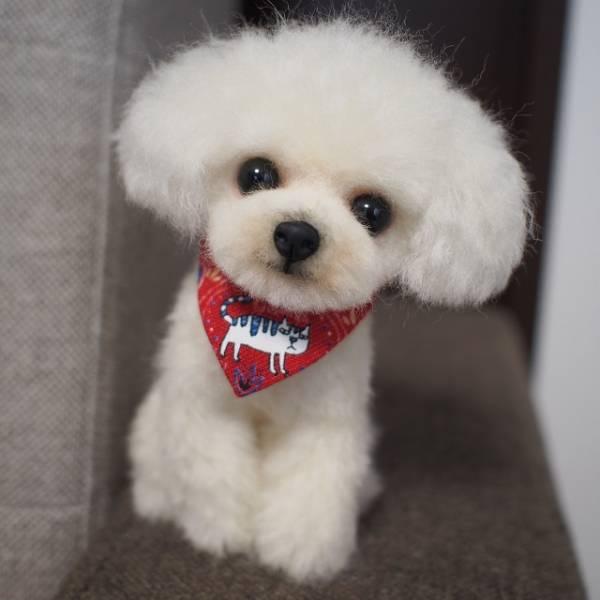 羊毛フェルト トイプードル ハンドメイド 犬