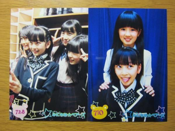 【6枚セット】 高井千帆 (集合写真F) みにちあベアーズ 生写真 / ロッカジャポニカ 3B junior