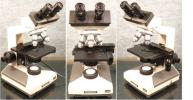 オリンパス生物顕微鏡CH-2型・ハロゲンランプ・メンテ済/良く見え