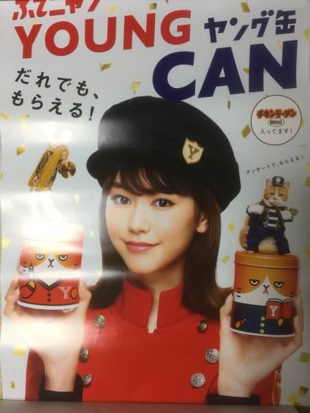 桐谷美玲 B2サイズポスター Yモバイル 非売品 グッズの画像