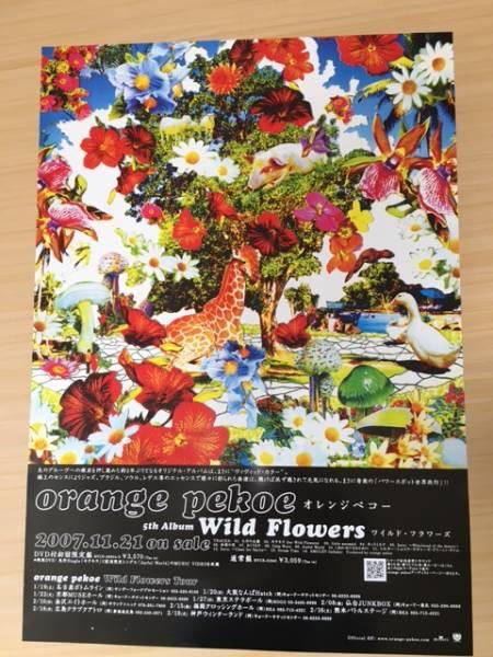 即決 オレンジ・ペコー Wildl-Flowers 2007年11月21日 リリース 告知 ポスター 送料無料です♪ 一部表面・裏面シワがあります