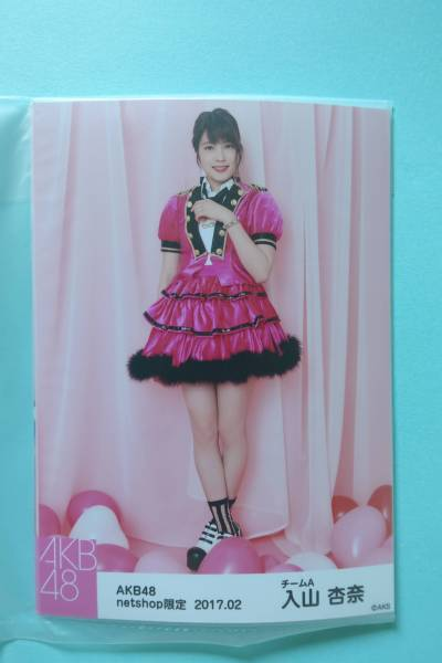AKB48 個別生写真5枚セット 2017.02 入山杏奈 ライブ・総選挙グッズの画像