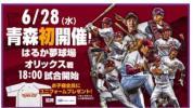 6/28(水) 楽天イーグルス vs オリックス はるか夢球場(弘前市)外野自由席 1〜4枚!