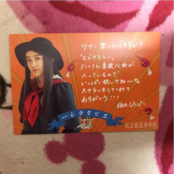 私立恵比寿中学 柏木ひなた ポストカード ライブグッズの画像