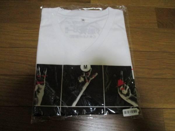 サザンオールスターズ 2013 サマーライブ Tシャツ M 未開封