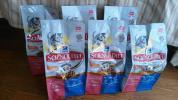 訳あり 6袋 まとめて セット サイエンス ダイエット シニア ライト チキン 栄養食 800g キャット フード 猫 7歳以上 4.8kg 賞味期限