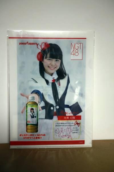 NGT48 クリアファイル 本間 日陽 ほんま ひなた ライブグッズの画像