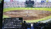 7月27日 木曜日 阪神タイガース 対 DENA、バックネット裏グリーンシートペアチケット!