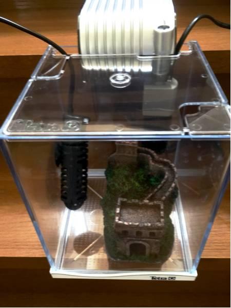 【美品】テトラ Tetra 小型 水槽セット 【ヒーター フィルター 付き】【熱帯魚/アクアリウム】☆おまけ付き