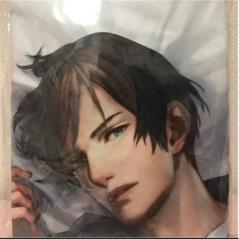 囚われのパルマ 抱き枕カバー ハルト グッズの画像
