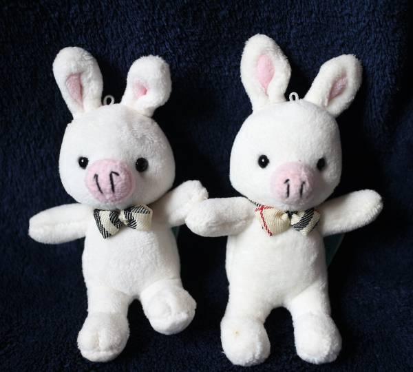 美男ですね ブタウサギ マスコット 2個  ぬいぐるみ小 縦・約13cm 送料220円