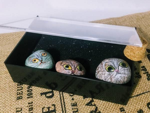いやし系ニャンコ「ねこっちシリーズ」 おとぼけ猫石標本(1)  猫目石 キャッツアイ 自然石 天然石アート 招福風水 KAMNA
