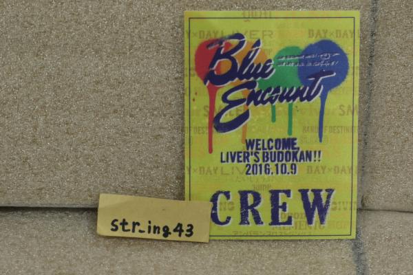 未使用 BLUE ENCOUNT LIVER'S武道館 ステッカーパス 黄色 ブルエン グッズ