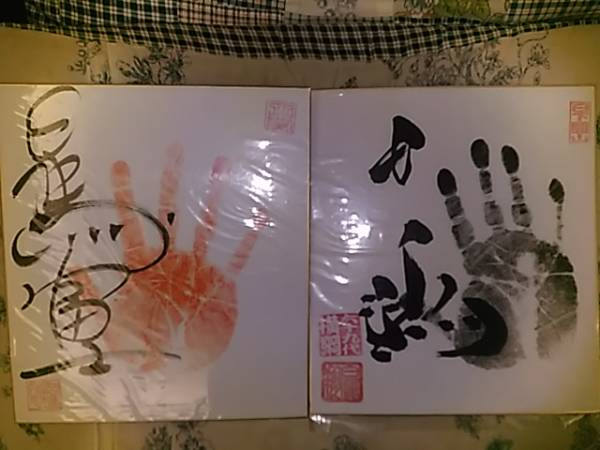 大相撲 白鵬 日馬富士 手形入り直筆サイン色紙 グッズの画像