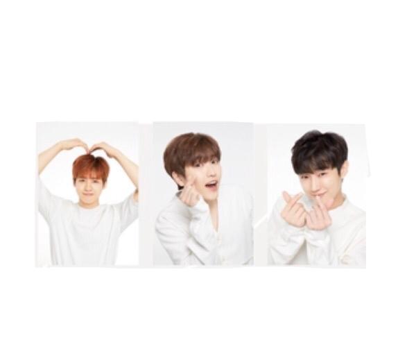 即決! B1A4 ツアー2017 Be the one ☆ ブロマイドB 5枚セット 未開封新品 ライブグッズの画像