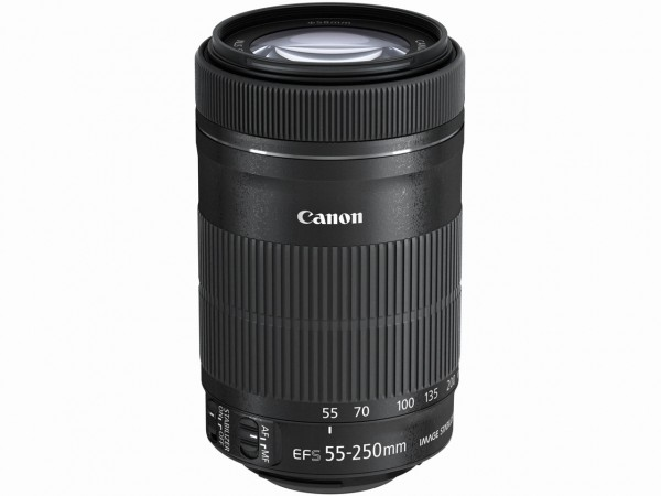 メーカー調整品 Canon EF-S55-250mm F4-5.6 IS STM 望遠ズーム