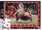 BBM大相撲カード2017[魂] 74 豪風 尾車部屋 前頭