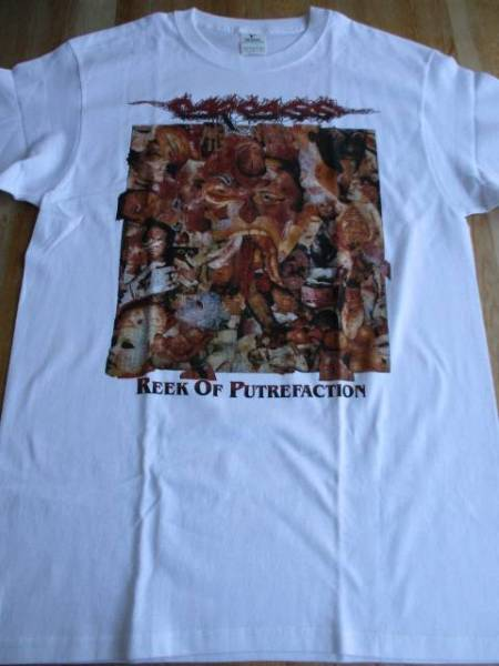 CARCASS Tシャツ reek of putrefaction 白M カーカス / napalm death terrorizer earache brutal truth