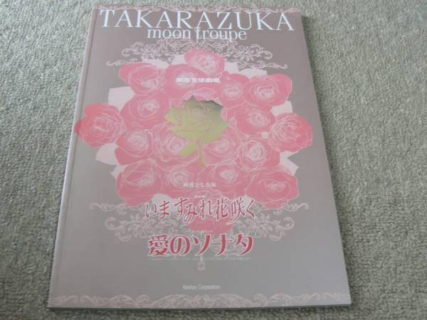 宝塚 月組 いますみれ花咲く パンフレット プログラム 真琴つばさ