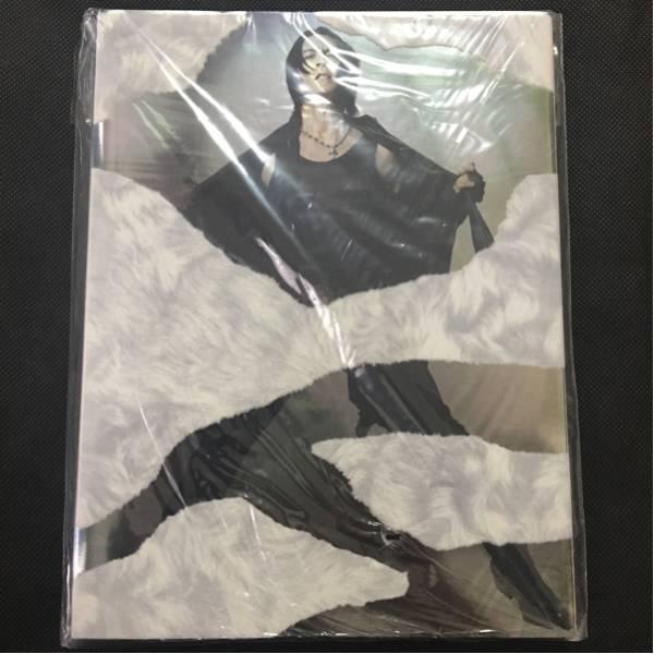 美品 氷室京介 2010-11 BORDERLESS パンフレット パンフ