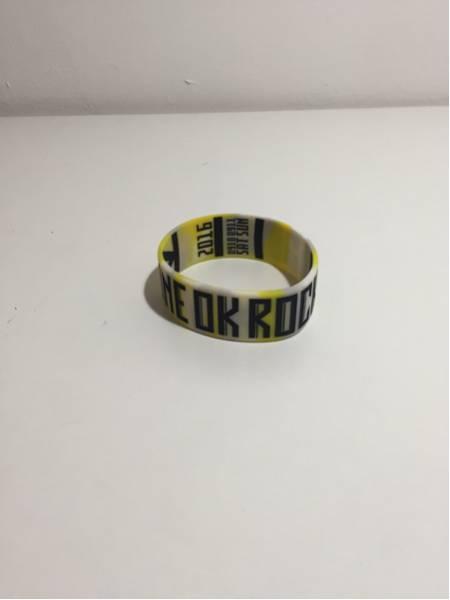 ONE OK ROCK ワンオク ラバーバンド 2016 渚園