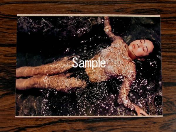 蒲池幸子(ZARD・坂井泉水) 2L写真 No.111 ライブグッズの画像
