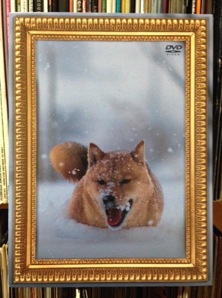 【2DVD+2CD】電気グルーヴ レオナルド犬プリオ ライブグッズの画像