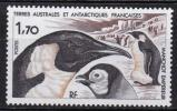 A仏領南極地域sc.114 鳥
