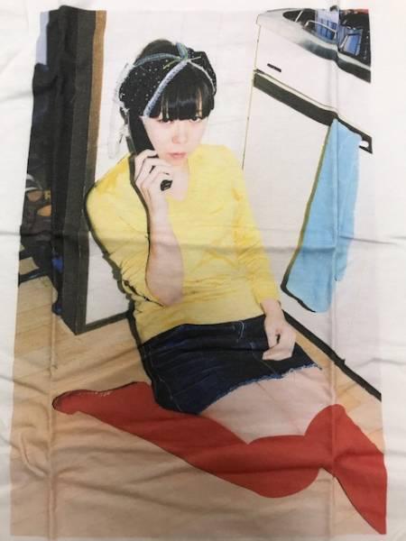 レアTシャツ 川島小鳥×銀杏BOYZ フォトTシャツSサイズ/ゴイステ未来ちゃんクリープハイプ ライブグッズの画像