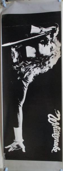 w128【Whitesnake】ホワイトスネイク特典横長ポスター(サイズ:約365×1030㎜)