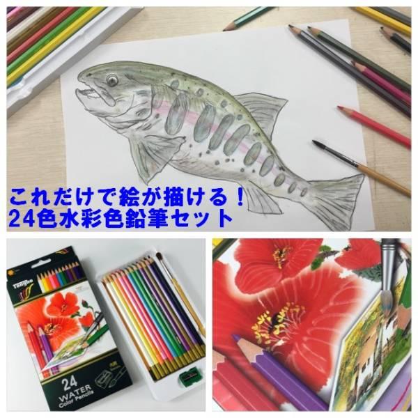 水彩色鉛筆アートセット 24色水彩色鉛筆!これと水さえあれば、立派な水彩画に お子様でも大人でも誰でも楽しめます 送料無料_画像1